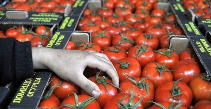 Domates üretici ve ihracatçısı Putin'in imzasını bekliyor