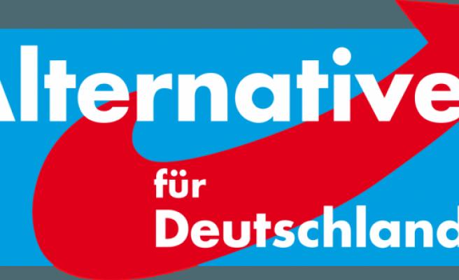 Almanya'da aşırı sağcı AfD partisinin tüm faaliyetleri, istihbarat tarafından izlenecek