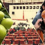 Meclis'te Afrin'den çalınan zeytin tartışması: AKP'liler 'ÖSO'nun sözcüsüyüz' dedi