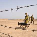 Tacikistan: Sınırdaki saldırıda 15 IŞİD'li öldürüldü