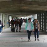 Venezuela'da Genç ve Eğitimli Nüfus Ülkeyi Terkediyor