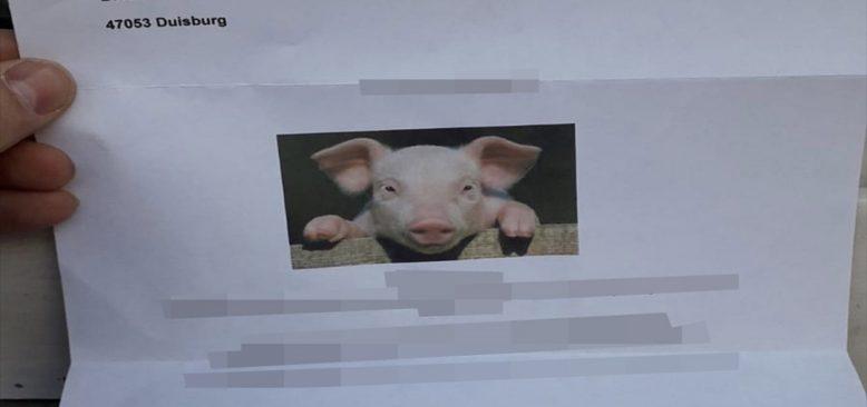 Almanya'da camiye domuz fotoğraflı hakaret mektubu gönderildi