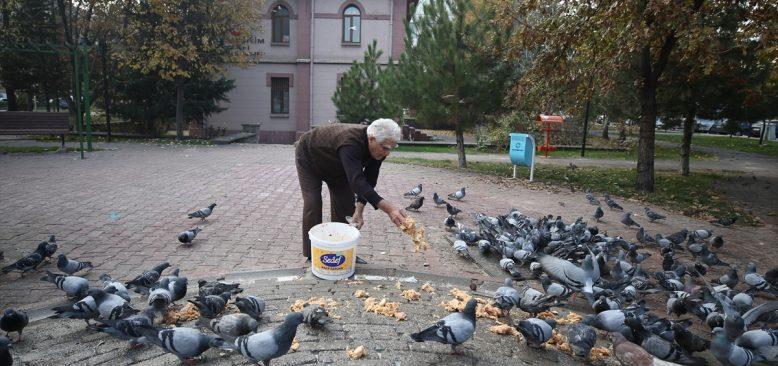Kore gazisi Fahri dede güvercinlerin can dostu oldu