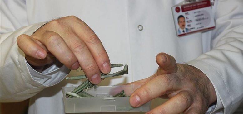 Zeytin yaprağı özütünün tip 2 diyabete etkisi kanıtlandı