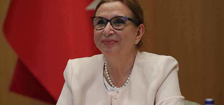 Ticaret Bakanı Pekşan: Türkiye hizmet ihracatçısı bir ülke