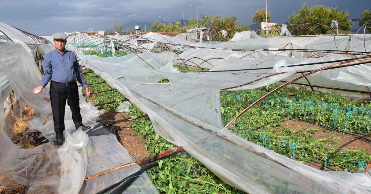 Doğal afetler Antalya çiftçisini perişan etti