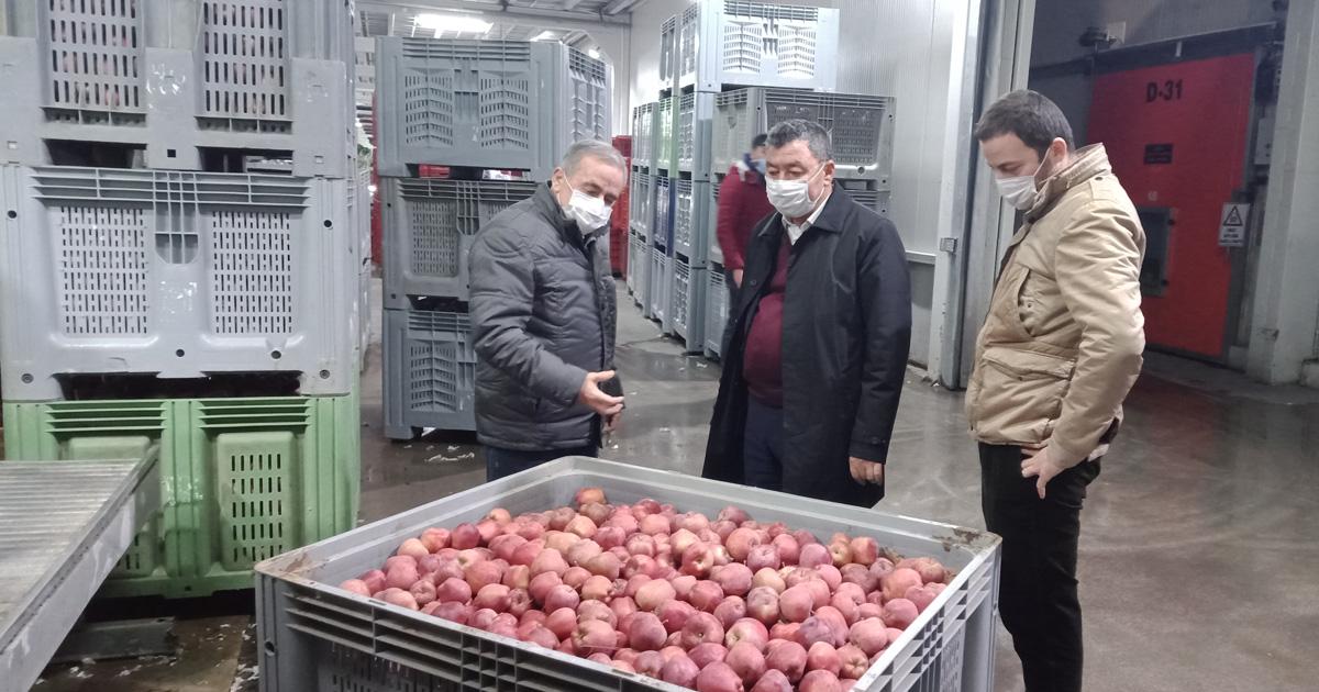Türkiye'de üretilen her 5 elmadan 1'i Eğirdir'den