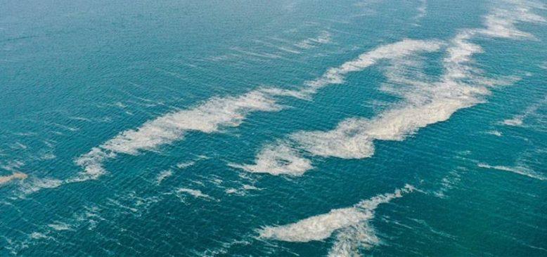 'Denizlerimizin kirliliğe karşı korunması için son derece kararlıyız'