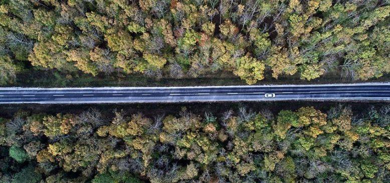 Trakya'nın 'saklı cenneti' longoz ormanları ziyaretçilerini bekliyor