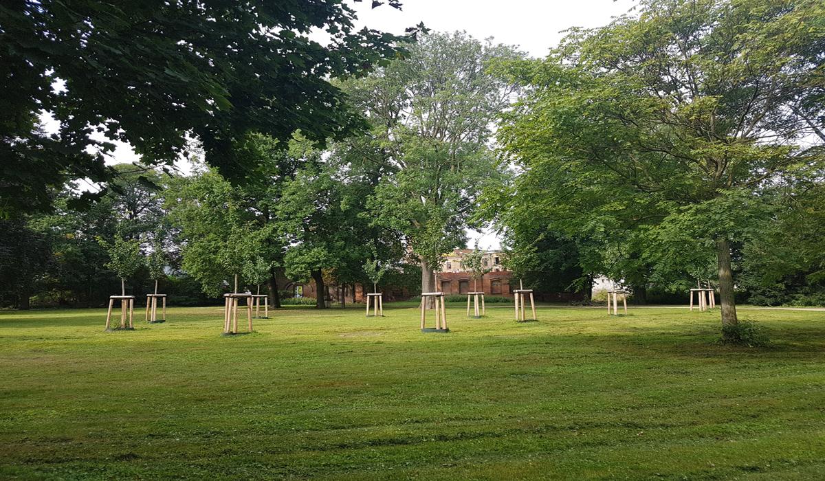 Ahlen`de NSU kurbanlarının anısına ağaçlık