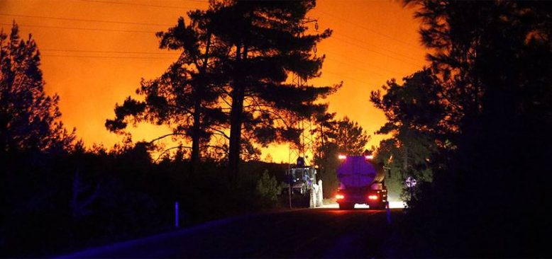 Çarpıcı Manavgat raporu: Türkiye'nin en büyük yangın felaketi