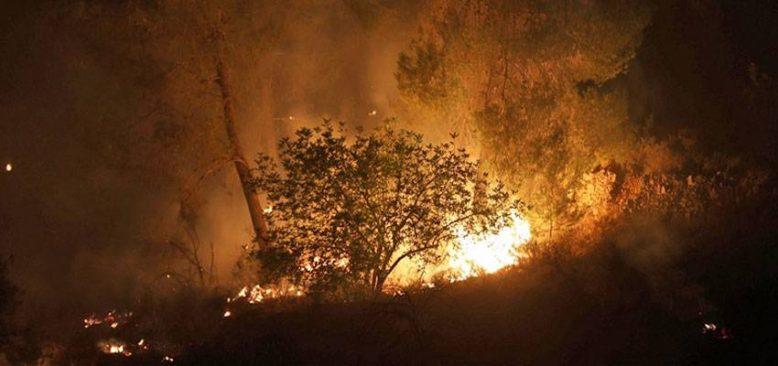 Fransa'nın Var bölgesindeki orman yangınında bir kişi yaşamını yitirdi
