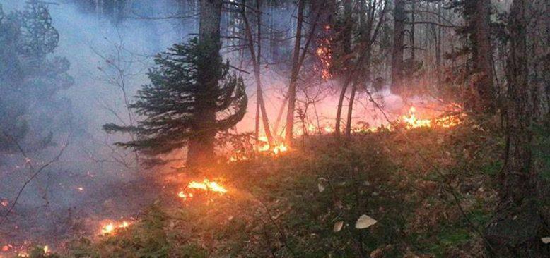 İtalya´da da yangından dolayı turistler tahliye edildi