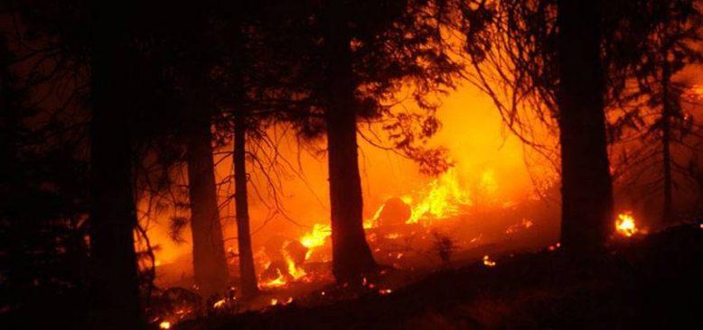 THY ekipleri orman yangınlarıyla mücadeleye destek vermeyi sürdürüyor