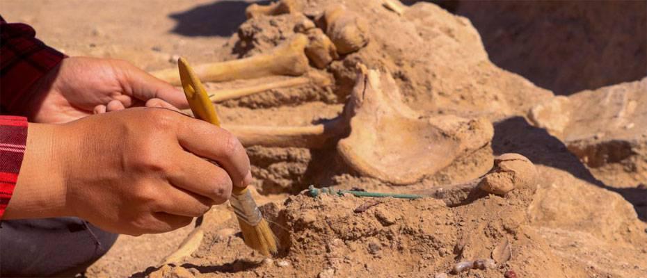 Çavuştepe Kalesi'nde takıları ve iki mührüyle gömülen kadın yöneticinin mezarı ortaya çıkarıldı